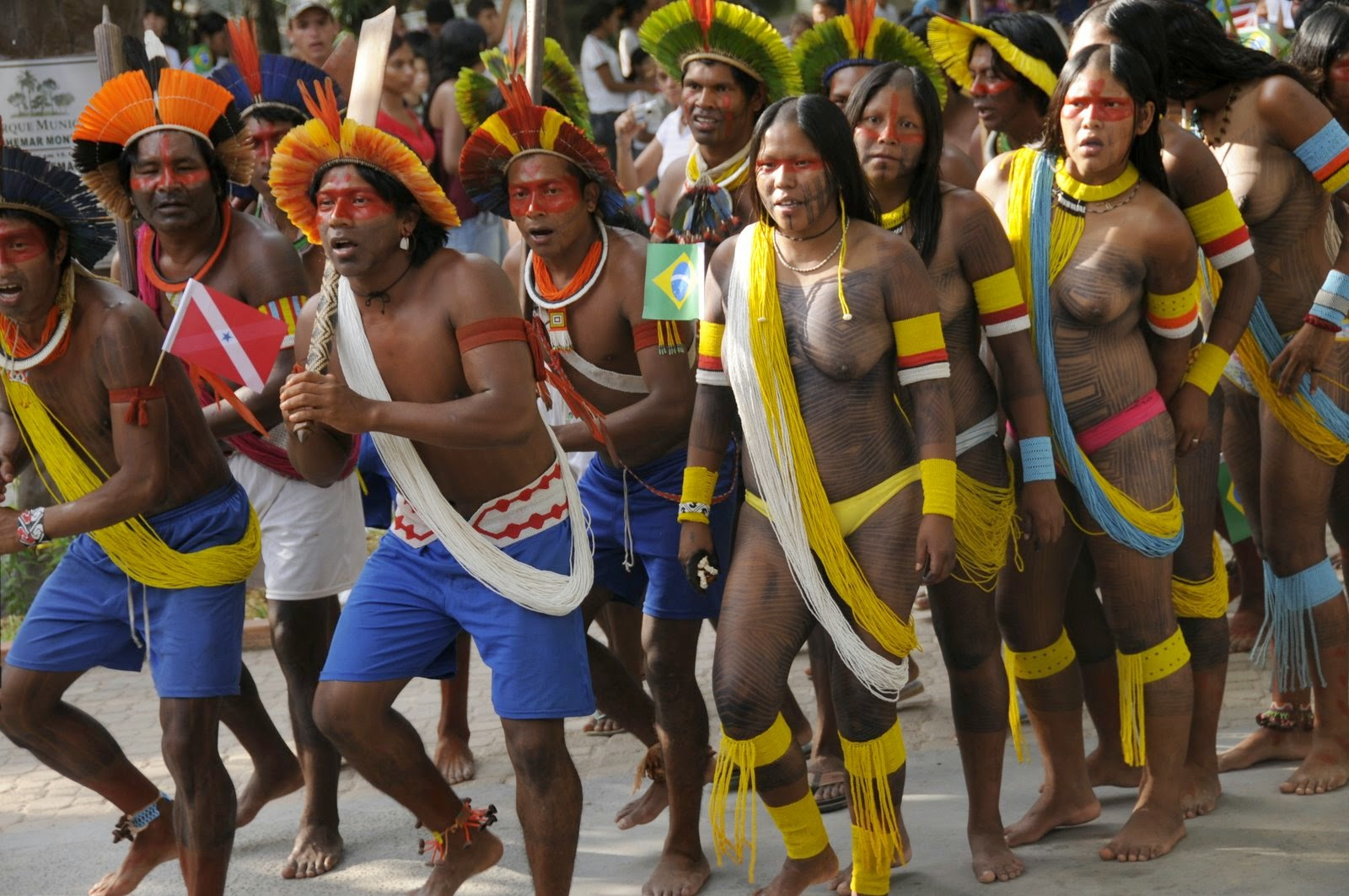 Click to enlarge image 41 kayapo-df-01.JPG